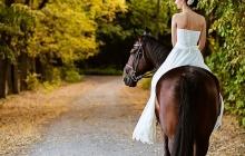 vestuvių fotografas plepys40